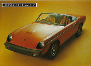 how many survive healey brochure